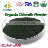 Wholesale healthy Chlorella powder with 60 high protein content