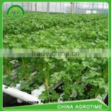 INquiry about Agrotime hydroponic greenhouse systems /aquaponic system