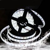 5050 SMD LED Outdoor DC 12V silicon light strips led strip light