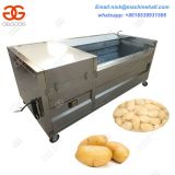 Brush Washing Machine/ Fruit and Vegetable,Potato/Carrot Brush Washer and Peeler Machine