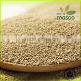 Low price good quality fresh dry brewers yeast 2015
