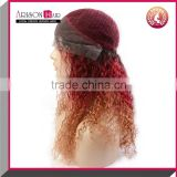 High Quality Virgin Brazilian 3 Three Tone Ombre Natural Straight Full Lace & Lace Front wigs With