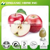Natural apple extract powder | apple peel extract | apple extract procyanidin b2