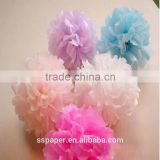 "Tissue Paper Pom Poms 10pcs/lot DIY 10""(25 CM) Decorative Flower paper Ball for Baby Shower Birthday Wedding Party Decorations"