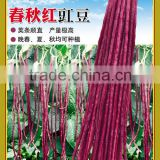 High quality red long bean seeds cowpea seeds for cultivation-Chun qiu 22