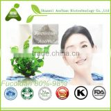 GMP Factory Dried Seaweed Extract for Cosmetic Kept Extract Seaweed Extract Powder Fucoidan
