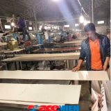 PVC WPC Wall Panel Board Production Line/Making Machinery