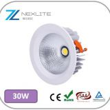 30w COB downlight waterproof led lights cutout 162mm cree lifud driver 5 years warranty white led lights