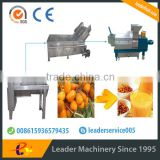 Leader hot sales seabuckthorn wine process line with Skype:leaderservice005