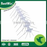 BSTW professional adhesive factory new product anti bird spikes                                                                         Quality Choice