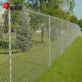 8FT Galvanized and PVC Coated Chain Link Fence for Protection