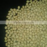 Natural Raw Soybean Seeds