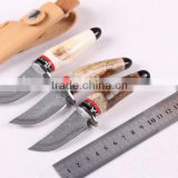 OEM Wild Antlers Deer Horn Damascus small collection knife