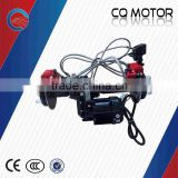 Inquiry about India auto rickshaw motor for passenger,Rear Axle Differential Motor ,48v 850w                        