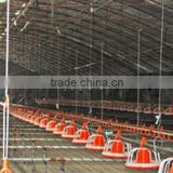 Focus industry poultry farm automatic chicken equipment chicken floor raising cage raising design layer chicken cages