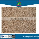 wholesale canary food wild bird seed