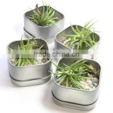 Outdoor Garden Decorative Metal Planter Made In India | Galvanized Garden Planter | Window Box planters