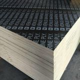 Best Quality Phenolic Glue Concrete Formwork Black Film Faced Plywood 18mm