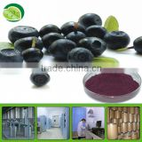 High Purity Acai Berry Juice Powder - 100% water soluble in bulk supply