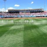 Cheap china top grade baseball artificial lawn grass turf for baseball field on sale