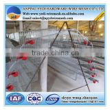 hot sale !!!quail breeding cages/quail cages feeding system