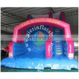 Best sale Inflatable pool slide