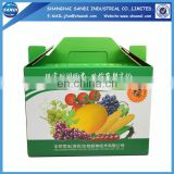 Custom packaging fruit carton box with printing
