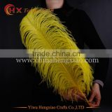 2016 high quality 26-28 cheap white ostrich feathers for sale