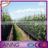 anti insect netting / anti bird mesh