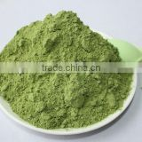 Evergreen Organic Wheat grass powder in bulk GMP Manufacturer