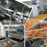 200-250kg/h Full Automatic Custard Cake Machine