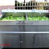 Professional hotel ozone air bubble vegetable apple berry washer machine