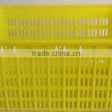 Quality Recycling Vegetable Plastic Crate