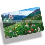 Full Logo Printing card usb, China Factory external usb graphics card, Wholesale low price 2gb business card usb
