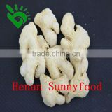 Exported Since 1992 High Quality Garlic Ginger Onion Chilli Chinese Dehydrated Vegetables
