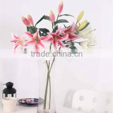 SJ11001120 Beautiful pink lily flower with high quality