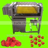brush type washing machine for strawberry