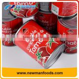 China manufacturer fresh ripe tomato sauce sweet and sour tomato paste canned brix 28-30%