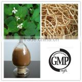 Top Quality 100% Pure Natural Houttuyniae Cordata Extract Powder