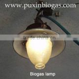 Biogas lamp with electricity fire maker