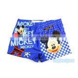 Kids Little Boys Cute Cartoon Bathing Swimming Beach Shorts Pants~Children's Swim Boxer Underwear Trunks~Accept Custom