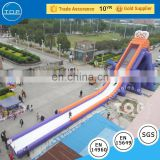 Good quality giant slide adult inflatables sale lake inflatable water slides for kids and adults