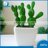 indoor / out door artificial cactus / artificial succulents for home/garden decorations