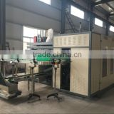China Famous Blow Molding Machine High Quality Hot Sale/Plastic Pallets Making Machine