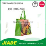 Glossy printing Design own convenient foldable luggage bags/plastic gift packaging bag/PP non woven bag made in china