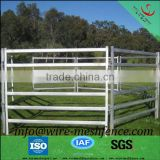 hot dip galvanized powder coat heavy duty cattle corral panels and gate used as round pen
