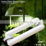 plant grow lamp magnetic induction and quiet fanless led grow lights