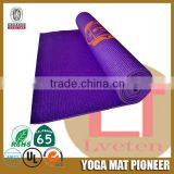 NBR PVC exercise yoga mat with customized printing
