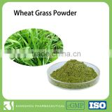 2016 New Superfood Organic Wheat grass Powder
