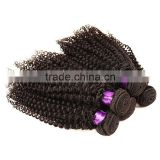 Cheap Factory Wholesale Price Premium Quality 100% Virgin Indian Afro Kinky Curly Weaving Hair